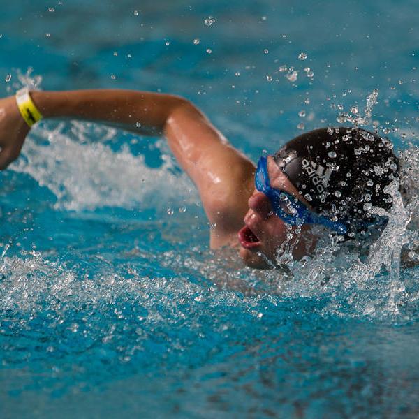 Sportart Schwimmen (Foto: SOD/ Stefan Holtzem)