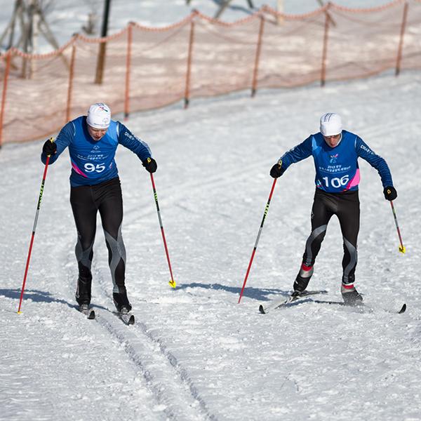 Sportart Ski Langlauf. (Foto: SOD/Luca Siermann)